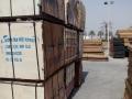 superplex shuttering plywood5.jpg
